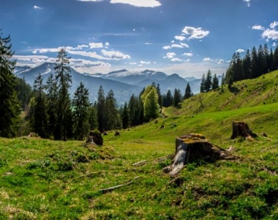 Allgäu Landschaftspanorama