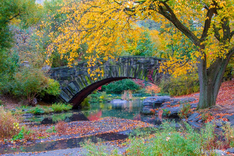 Brücke am Central Park