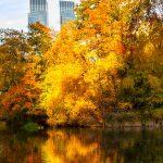Herbst-Spiegelung im Central Park