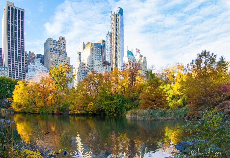 Central Park trifft Stadt-Kulisse