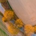Herbstlicht: Zu Lande, am Wasser und aus der Luft