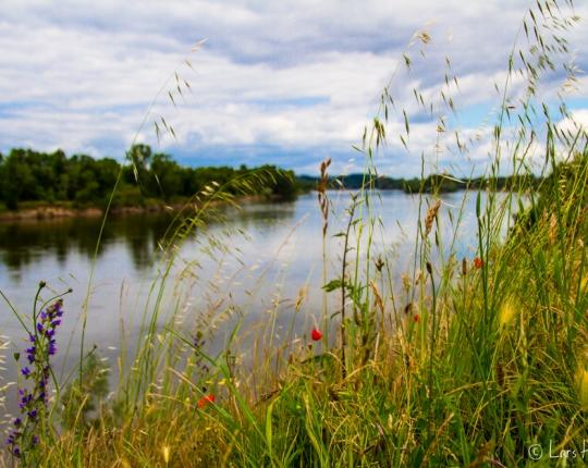 Azay le Rideau im Loire Tal