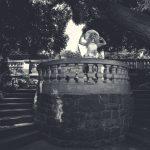 Ascot - Ein extravagantes Foto-Shooting