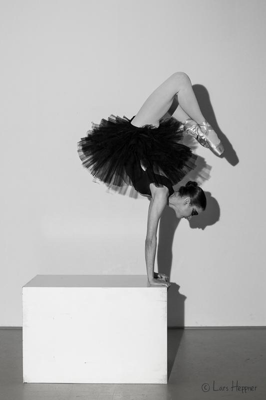 Black Swan Skulptur