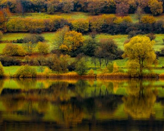 Herbst Impressionen aus der Vulkaneifel