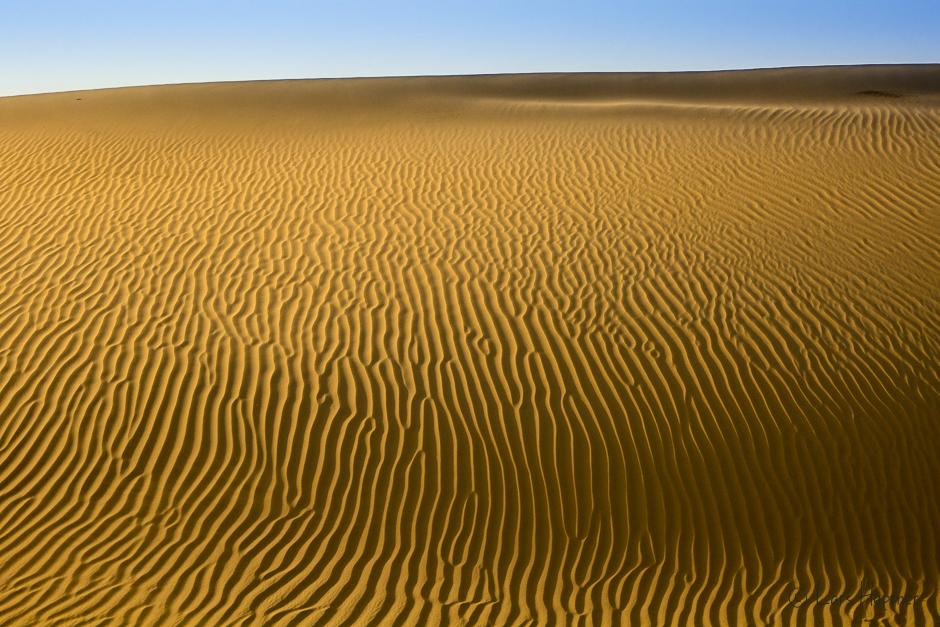 Wüste von Abu Dhabi