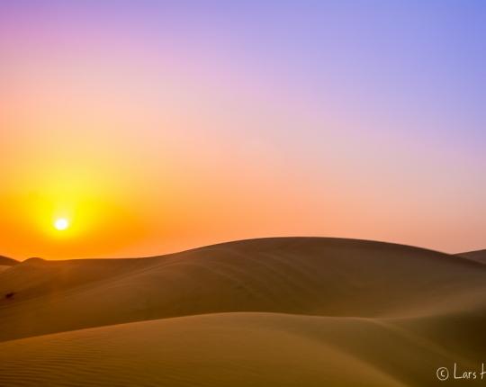 Wüstentour in Abu Dhabi